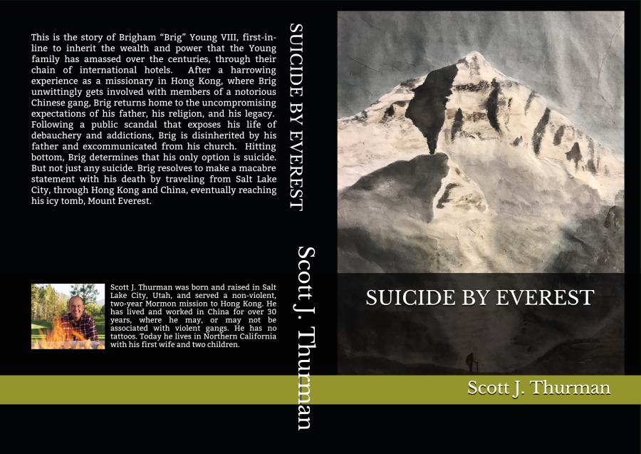Suicide By Everest – Book Description